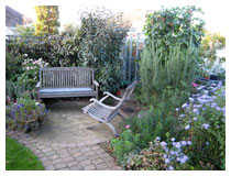 Sitting-area in autumn, with michaelmas daisies in bloom