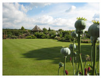 View across the main lawn in this beautifully kept garden.