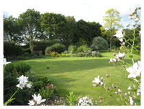 Planting  around the lawns is attractive all year round.